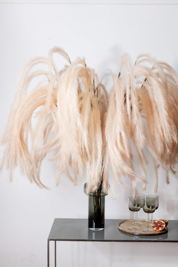 Box of Joy - Feather Feature - Signature Rentals